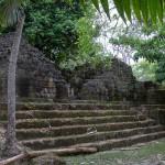 Guate-3